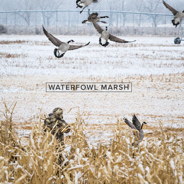 waterfowl_marsh_mobile