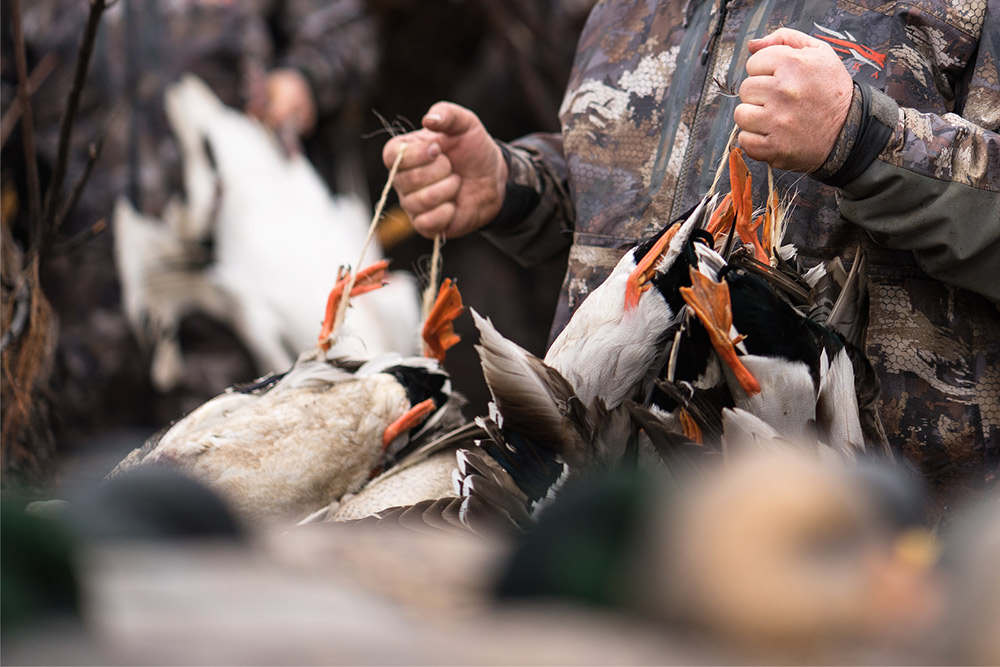 A duck hunter holds heavy straps of mallards.